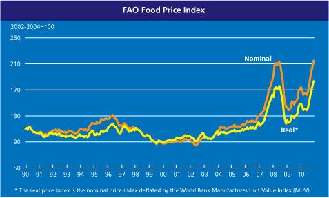 20110103-foodpriceindex.jpg?w=477&h=287