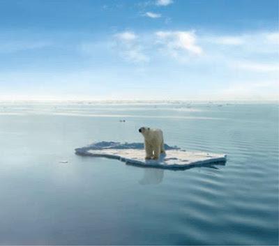 20130120-polar-bear-ice