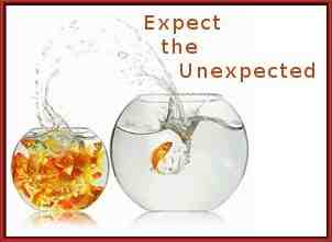 Expect the unexpected: fish