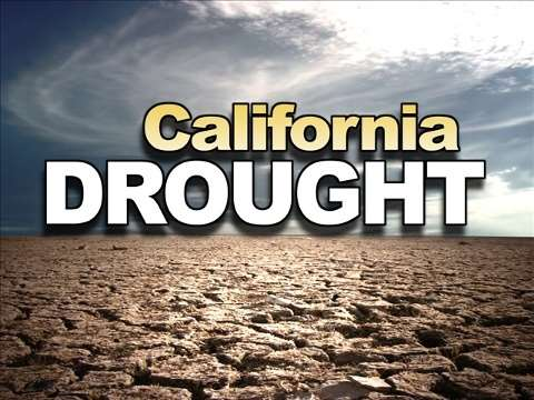 california drought The current california drought is the most severe in 1,200 years, according to historical information gleaned from tree rings.