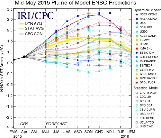 NOAA ENSO forecast, 13 July 2015