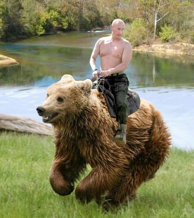Putin on a bear