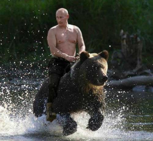 Putin riding a bear