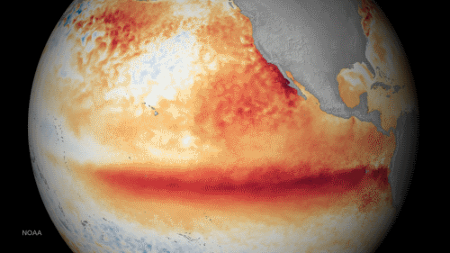 El Nino in action, from NOAA
