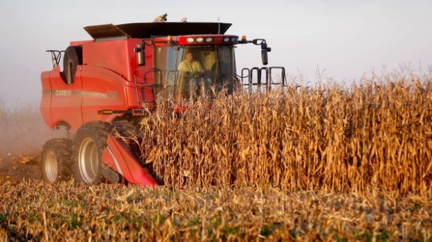 America's crops